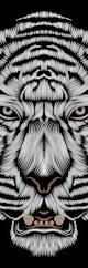best 20 le tigre animal ideas on pinterest tigres le tigre