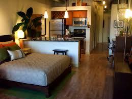 apartments licious studio apartment design ideas vie decor type