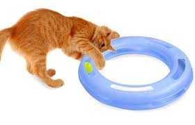 the 15 best interactive cat toys of 2017