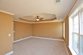Tray Ceiling Painting Ideas Tray Ceiling Painting Ideas Choose A Tray Ceiling Ideas