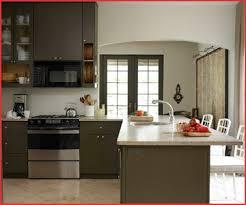 Kitchen Design Colors Color Ideas For Kitchen Color Ideas For Kitchen Cabinets Best