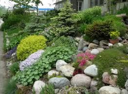 rock garden design ideas sustainablepals org