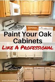 cheap diy kitchen ideas 15 luxury diy kitchen cabinet makeover gallery conurbania org