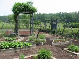 vegetable gardens cedarwood landscaping inc