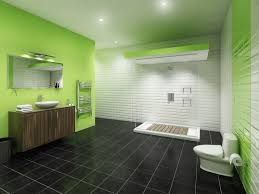 gray and green bathroom ideas inspirational charming modern