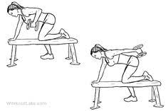 Flat Bench Dumbell Seated Bench Leg Pull In Flat Bench Knee Up Exercícios