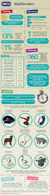 64 best infographics images on pinterest infographics compass