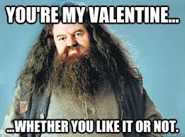 Harry Potter Valentines Meme - you re my valentine whether you like it or not valentine