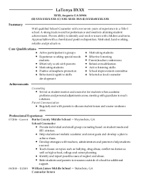 Resume Counseling Sample Counseling Resume Graphic Resume Sample For