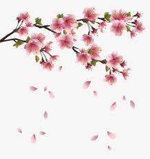 flower petals floating flower petals pink flowers petals floating flower