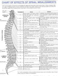 Nerve Map Spinal Misalignments Chart