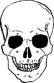 Animated Halloween Skeleton by Skeleton Head Clipart 55