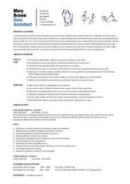 Nursing Internship Resume Intern Resume Sample
