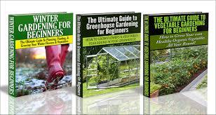 cheap backyard greenhouse gardening find backyard greenhouse