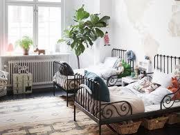 une plante dans une chambre plantes dans une chambre plantes dans une chambre mettez ces