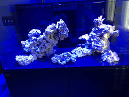 stunner led aquarium light strips red sea max s 650 purchased from aquarium butler scaped by