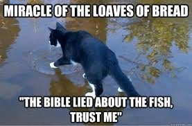 Cat In Bread Meme - miracle of the loaves of bread the bible lied about the fish trust