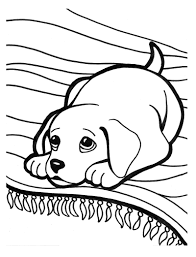 puppy clipart coloring page pencil and in color puppy clipart