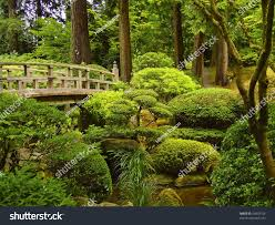 japanese garden pictures footbridge over pond japanese gardens portland stock photo