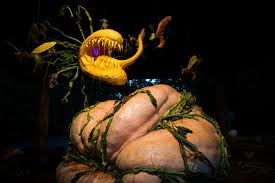 New York Botanical Garden Pumpkin Carving by Amazing Pumpkin Carving Patterns Hgtv
