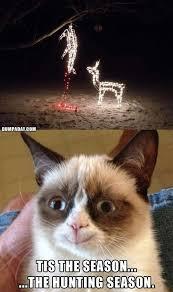 Grumpy Cat Christmas Memes - grumpy cat christmas funny christmas lights what makes grumpy cat