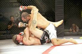 lotta in gabbia mma mixed martial arts