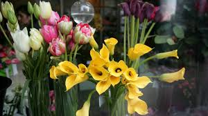 Flower Shops In Washington Dc - washington court rules against florist who refused flowers for