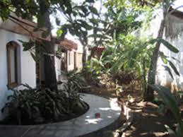 Backyard Hostel Granada Nicaragua Backyard by Il Padrino In Granada Nicaragua Book Budget Hotels With