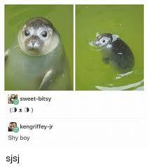 Shy Meme - sweet bitsy cd e cd kengriffey jr shy boy sjsj girl meme on me me