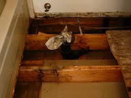 Mold On Hardwood Floors Titandish Decoration - Hardwood flooring in bathroom