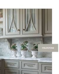 Cabinet Colors For Kitchen Cabinet Paint Color Trends To Try Today And Love Forever Cabinet