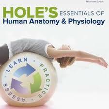 Human Anatomy Textbook Pdf Buy New U0026 Used Textbooks U0026 Schoolbooks Carousell