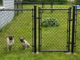 enclosed backyard wire fence backyard vegetable garden house