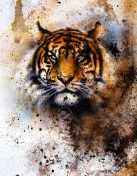 tiger collage on color abstract background rust structure