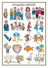 best 25 collective nouns worksheet ideas on pinterest