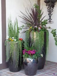 beautiful indoor plant ideas 27 inside plant ideas great indoor