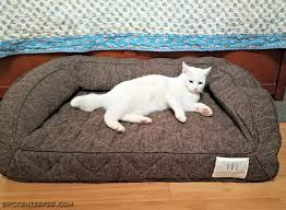 Comfortable Dog Comfortable Pet Beds For Cats And Dogs From Brentwood Home