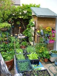 25 unique small space gardening ideas on pinterest small garden