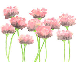 Watercolor Flowers - nature watercolor flowers painting pink poppies abstract