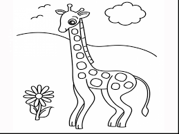 impressive giraffe drinking water coloring pages with giraffe
