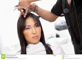 young woman having haircut at beauty salon stock image image