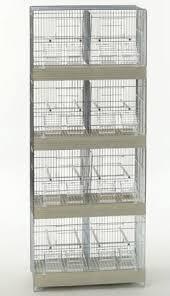 gabbie per gabbia doppia domus molinari gabbie per allevamento