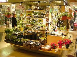 Flower Shops In Washington Dc - 11 washington dc flower shops what are the best tips for