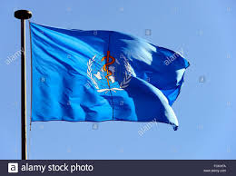 flag of the world health organization flag of w h o world health organization stock photo royalty free