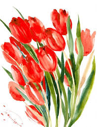 Awesome Looking Flowers Best 25 Red Tulips Ideas On Pinterest Red Flowers Purple