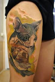 cat tattoo sphynx cat tattoos design ideas 2018
