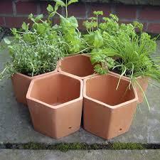 herbs planter terracotta hexagonal herb garden planter set garden planters
