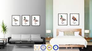Duck Home Decor Home Decor Creative Duck Home Decor Interior Design Ideas Fancy