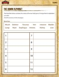 the human alphabet u2013 free 2nd grade science worksheets