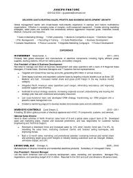 sample 30 60 90 day plan resume template